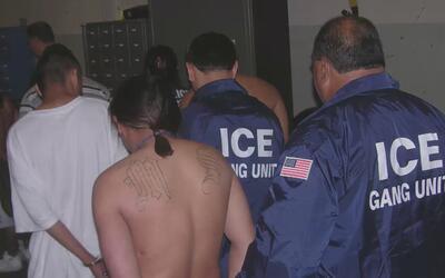 Autoridades de Santa Cruz piden perdón a la comunidad inmigrante por det...