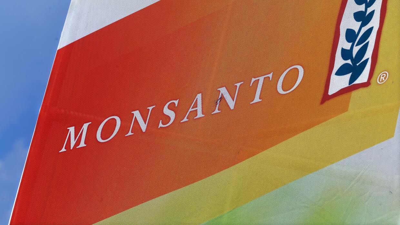 El gigante estadounidense de la biotecnología y la agroquímica Monsanto.