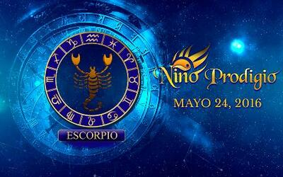 Niño Prodigio - Escorpión 24 de mayo, 2016