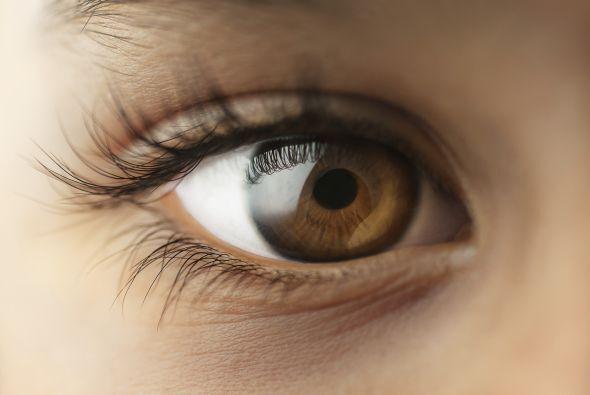 Una mirada nos indica ternura, o miedo, desprecio o admiración, odio o a...