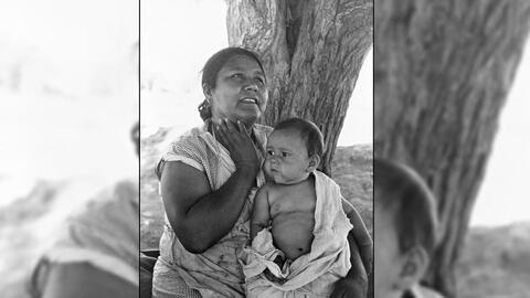 La fotógrafa Dorothea Lange muestra la historia de inmigrantes mexicanos...