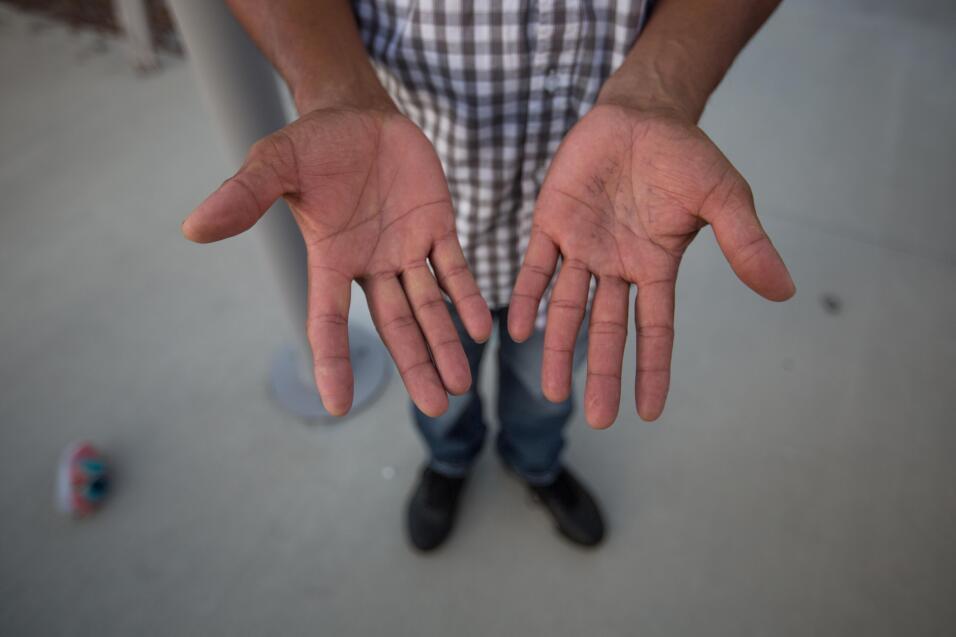 """José, 40, de El Salvador, trabaja en un invernadero de plantas varias. """"..."""