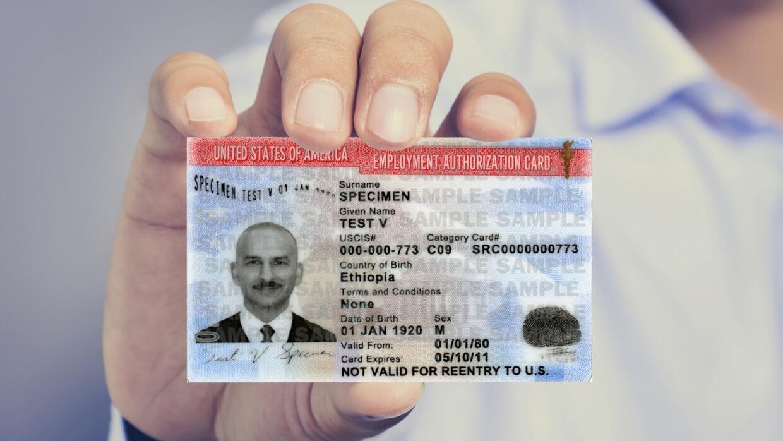 Nueva estafa migratoria promete permisos de trabajo para quienes tengan...