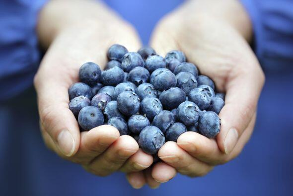 Moras azules. Son de las frutas que más antioxidantes le aportan al cuer...
