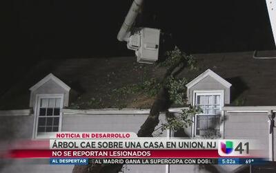 Árbol cayó sobre una casa en Union, NJ