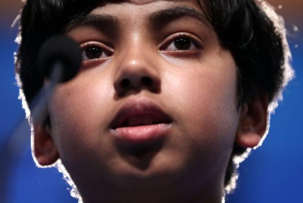 """Pranav no pudo deletrear correctamente la palabra """"cyanophycean"""", una cl..."""