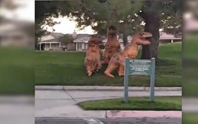 'Tyrannosaurus rex' en San Bernardino.