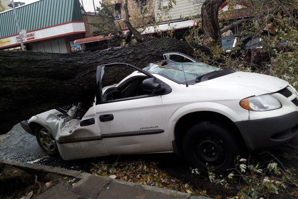 'Tu Cámara' en el Bronx. Los daños en el Bronx, Nueva York. Imagen envia...
