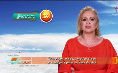 Mizada Acuario 20 de enero de 2017