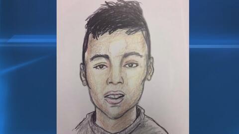 Investigan la muerte de un joven hispano hallado en una zona boscosa de...