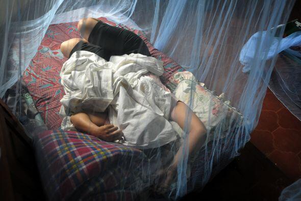 La epidemia de dengue hemorrágico ha causado al menos 74 muertos este añ...