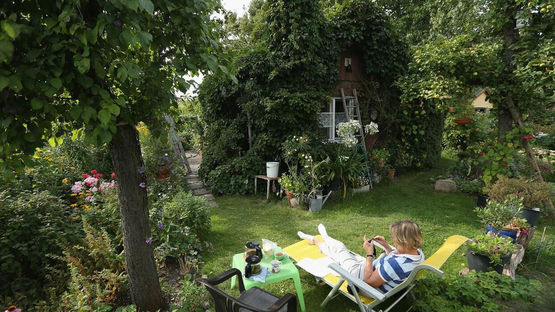 Esta aplicación te ayudará a mantener en perfectas condiciones el jardín...