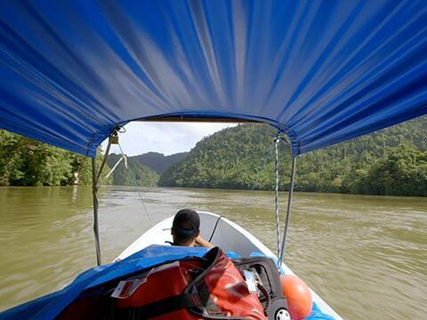 Cruzando el corazón de la jungla guatemalteca a través del...