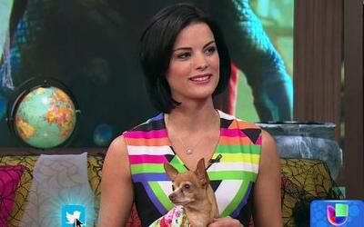 Jaimie Alexander, de la película 'Thor: The Dark World', visitó Despiert...