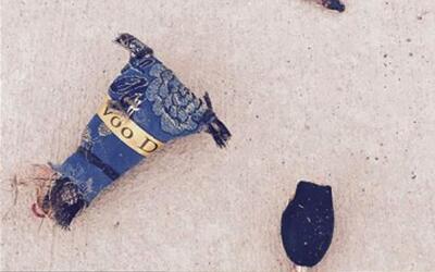 La Policía de Georgia está siendo amenazada con Voodoo