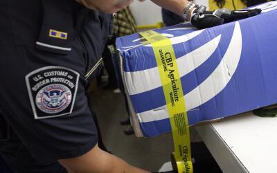 Agente de la Oficina de Aduanas y Protección Fronteriza (CBP) en...