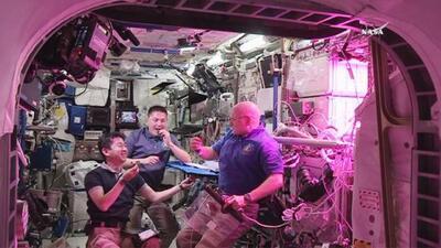 """Las primeras lechugas cultivadas en el espacio saben """"increíble"""" según a..."""