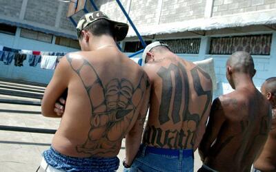 Exintegrante de la pandilla Mara Salvatrucha acusa al presidente Trump d...