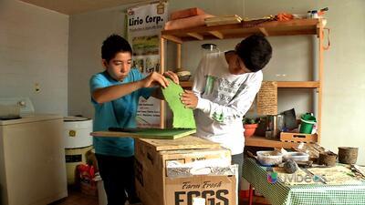 Niños científicos hacen papel con lirio acuático