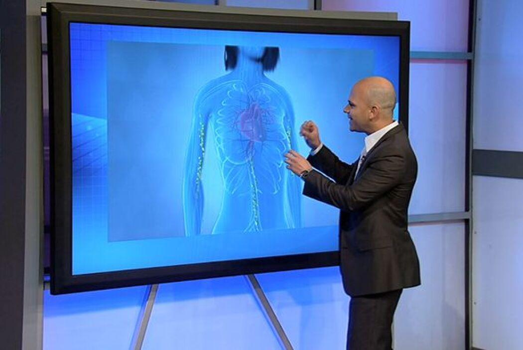 Dedicado al tema de la salud del corazón estuvo el segundo programa de C...