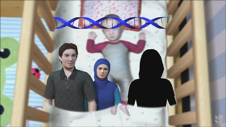 Animación: cómo lograron los científicos el nacimiento del primer bebé d...
