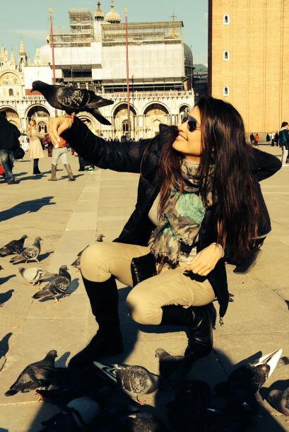Un lindo recuerdo de la piazza San Marco y sus habitantes, una tiernas p...