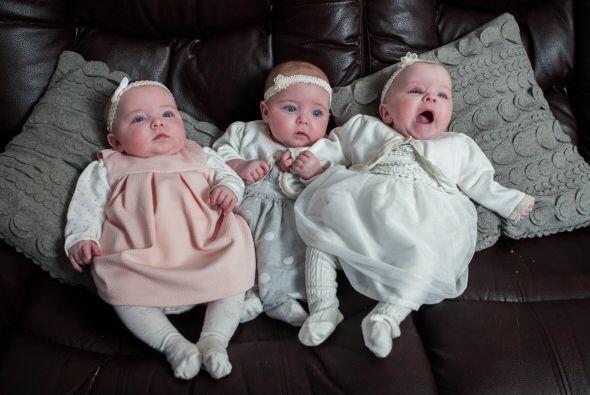 Súbitamente la familia paso de tres integrantes a duplicarse con seis.