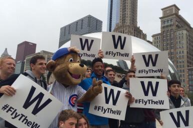 Fans Cubs