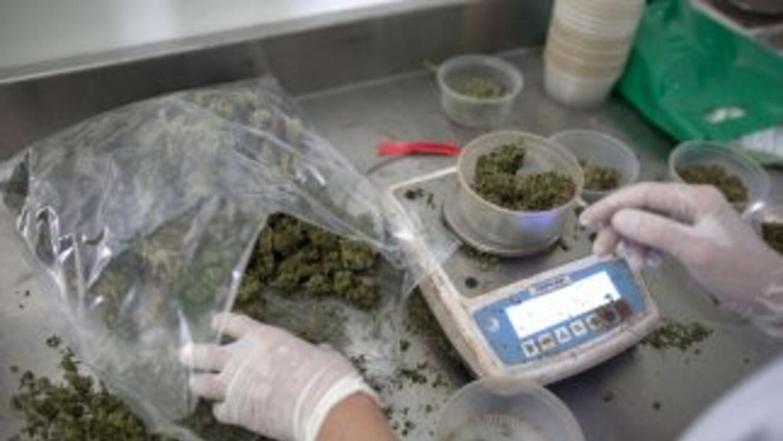 El consejo municipal de Berkeley aprobó una ley que otorga el derecho de...