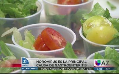 Cómo prevenir la gastroenteritis