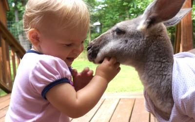 Una canguro se convirtió en 'nanny'