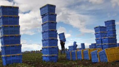 Tras su aprobación y ejecución, cientos de trabajadores hicieron maletas...