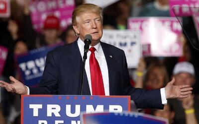 """Trump: """"Por qué no cancelamos las elecciones y se las damos a Trump"""""""