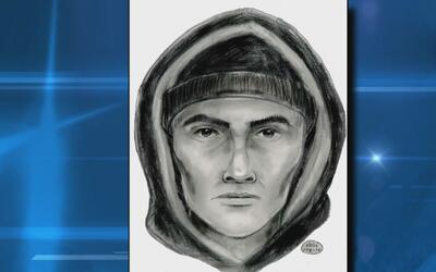 Revelan el retrato hablado del hombre que atacó a una empleada de la MTA...