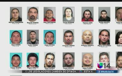 Arrestan a decenas de pandilleros en Concord