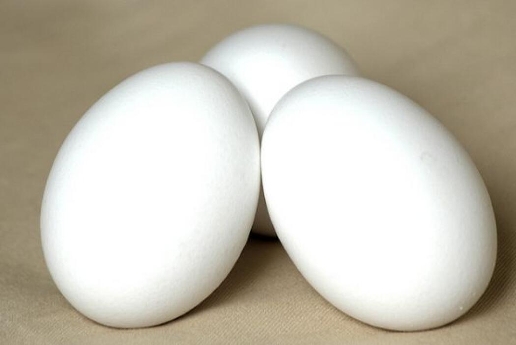 """•Beitzah """" Un huevo cocido, simboliza el Korban Jagigah (festival del s..."""
