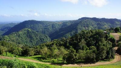 El parque ecoturístico en las montañas del centro de la Isla  abrirá un...