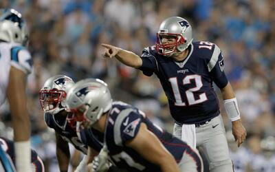 Patriots - Panthers: El debut de Tom Brady en la pretemporada 2016