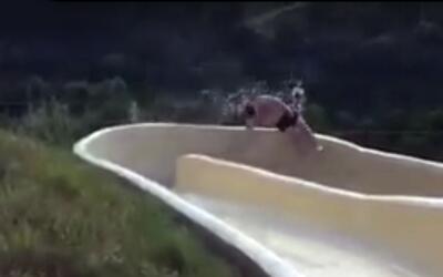 David Salmón sobrevivió a la caída de un tobogán acuático