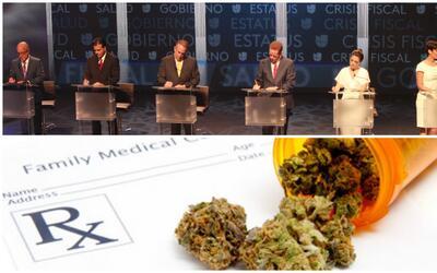 ¿Quiénes apoyan la legalización de la marihuana en Puerto Rico?