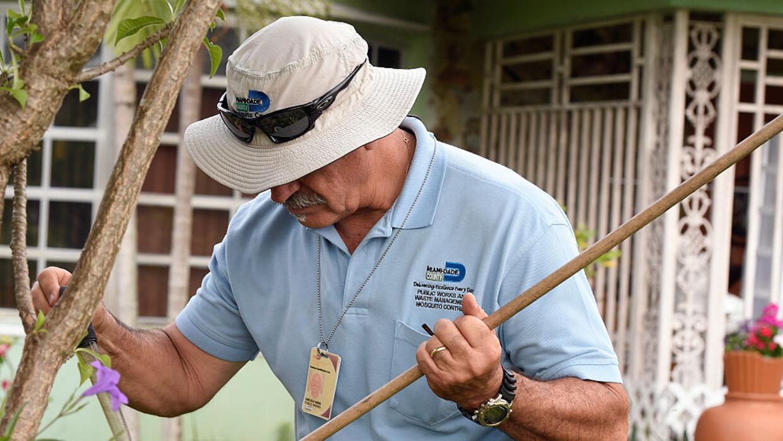 Personal del condado Miami Dade busca mosquitos aedes aegypti en una cas...