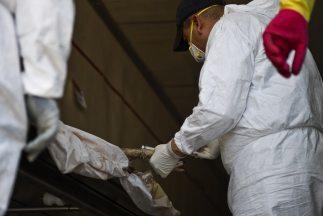 Los cuerpos sin vida de 11 personas fueron hallados la tarde del viernes...