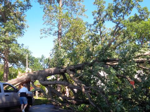 Mira las imágenes de los destrozos que causó un tornado a...