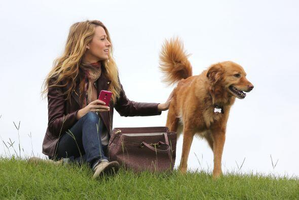 Dicen que el mejor amigo del hombre es el perro, y después de ver esta i...