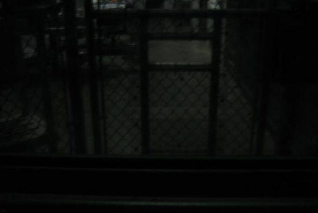 Los prisioneros tienen algo de intimidad.