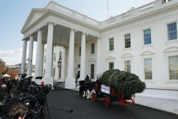 Dentro de las decoraciones más alabadas con el árbol y las...