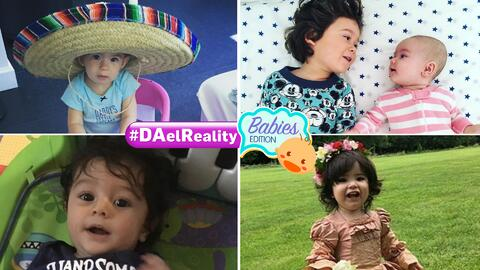 #DAEl Reality Babies Edition