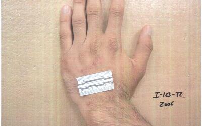 Una de las 198 imágenes que muestra los abusos.