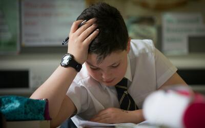 El bullying tiene graves efectos negativos sobre las calificaciones y la...