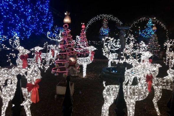 Gustavo Arce tomó una foto de un patio decorado con varios elementos de...